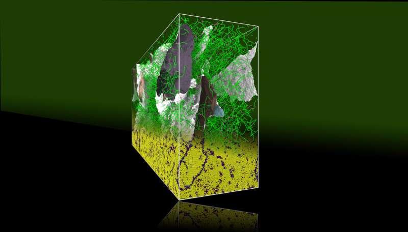 LLNL team solves 100-year-old metallurgy puzzle