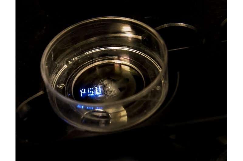 Machine sucks up tiny tissue spheroids and prints them precisely