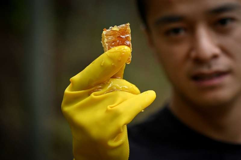 Ma Gongzuo started selling his honey using a technique increasingly popular with Chinese farmers: video clips that show the orig