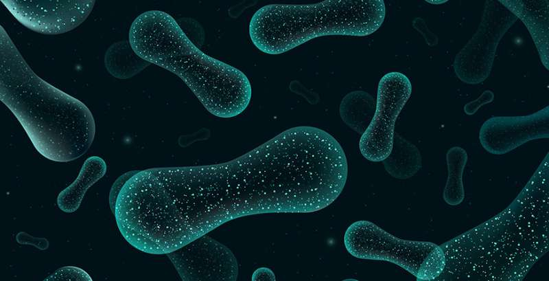 Managing the microbiome raises new hope for autism