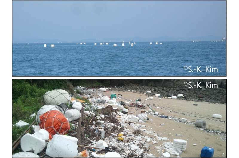 Marine pollution: How do plastic additives dilute in water and how risky are they?