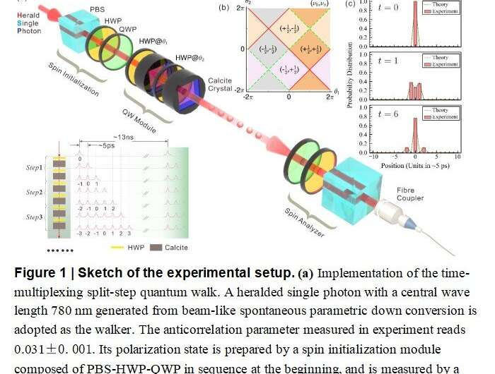 Measuring a dynamical topological order parameter in quantum walks