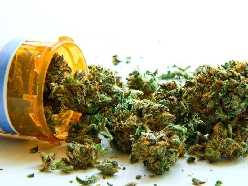 Medical marijuana tied to fewer admissions in sickle cell disease