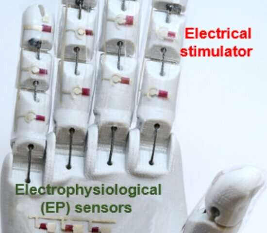 Medical robotic hand? Rubbery semiconductor makes it possible