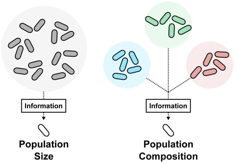 Microcensus in bacteria