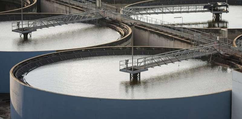 Calentar los desechos de aguas residuales en el microondas puede hacer que su uso como fertilizante en los cultivos sea seguro
