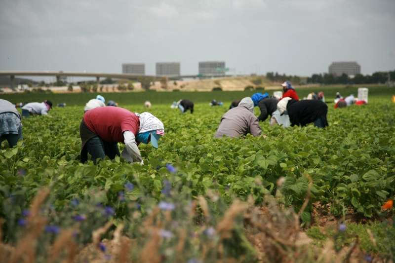 Migrant workers face further social isolation and mental health challenges during coronavirus pandemic