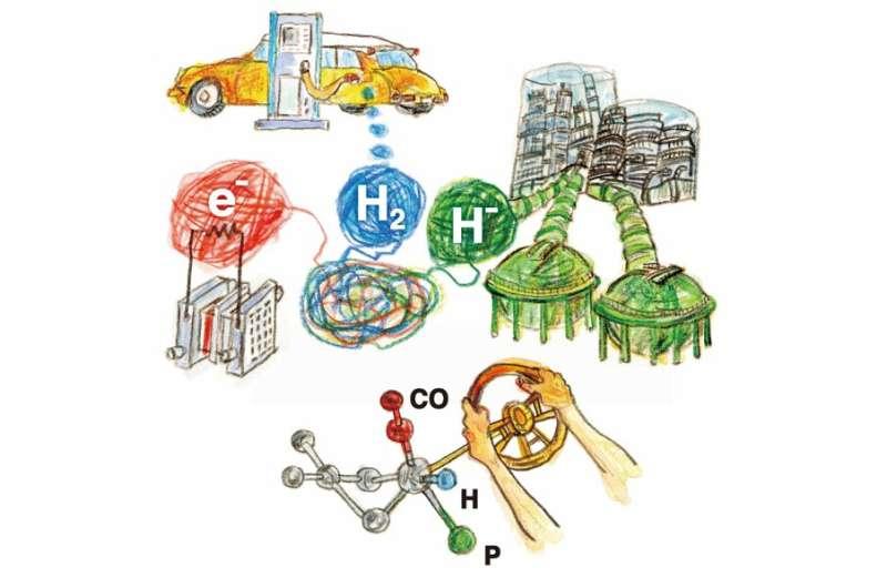 Molecular twist makes one catalyst useful for three hydrogen applications