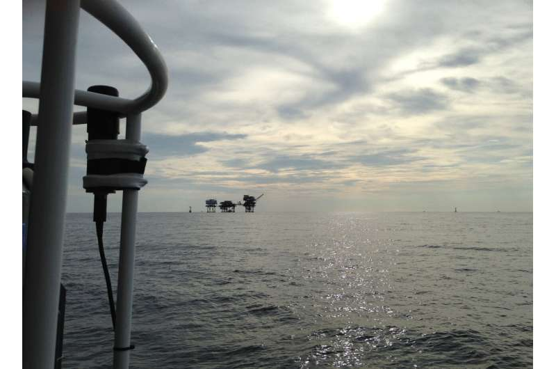 Mystery of marine recycling squad solved