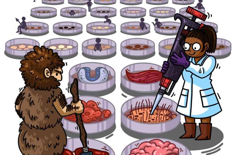 Neandertal genes in the petri dish