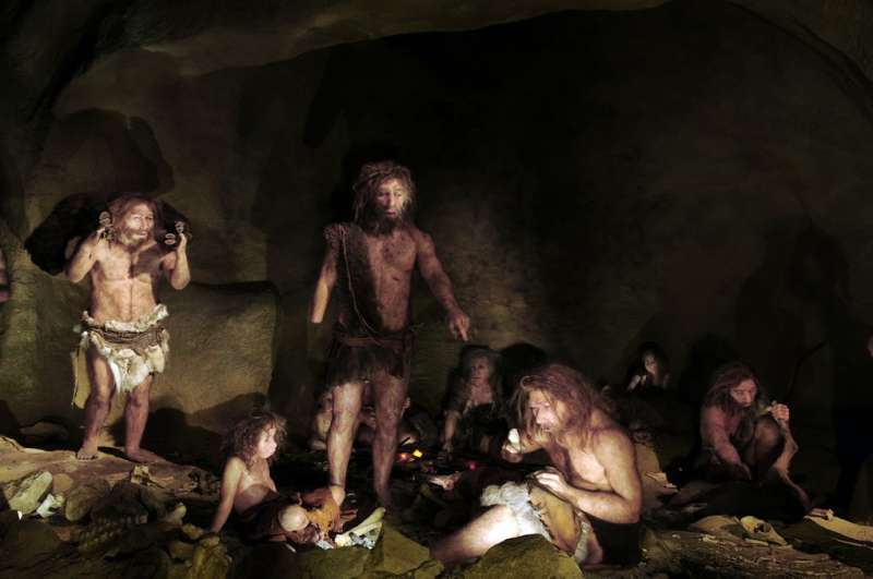 Neandertals may have had a lower threshold for pain