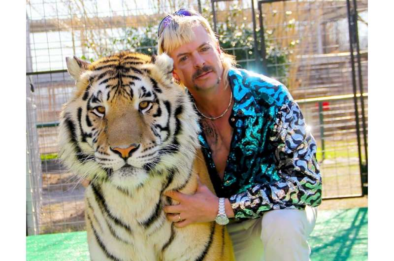 """Netflix has played down concerns that hit shows such as """"Tiger King"""" could run dry"""