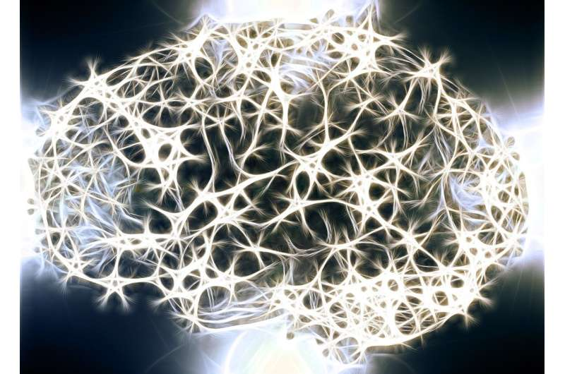 Networks for memory and learning