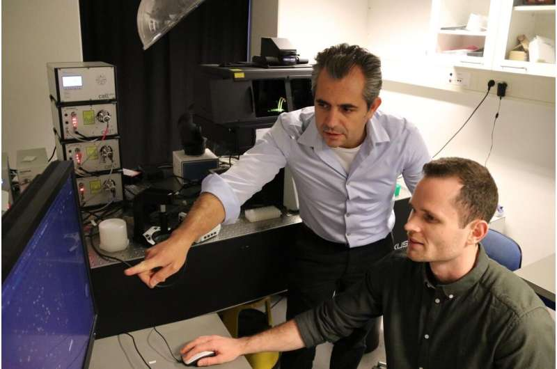 New Danish AI tool provides much-needed help to protein scientists across the world