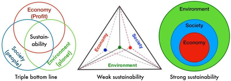 New definition of sustainability overcomes flaw hampering global transformation efforts