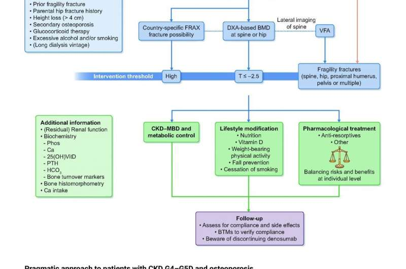 New European consensus on management of osteoporosis in advanced chronic kidney disease