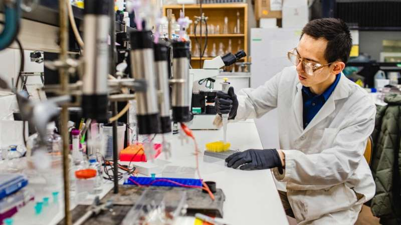 Newly found bacteria fights climate change, soil pollutants