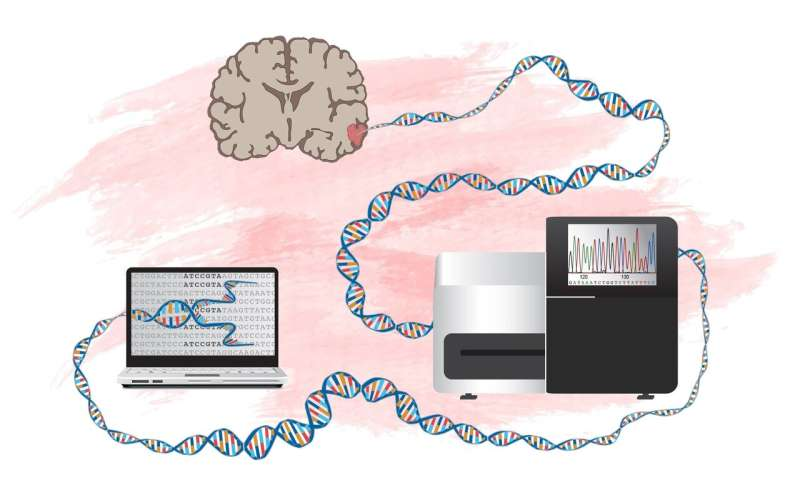 New method to identify genes that can drive development of brain tumors