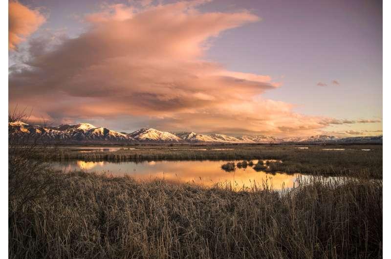 New model improves management of wetland, floodplain and river habitats