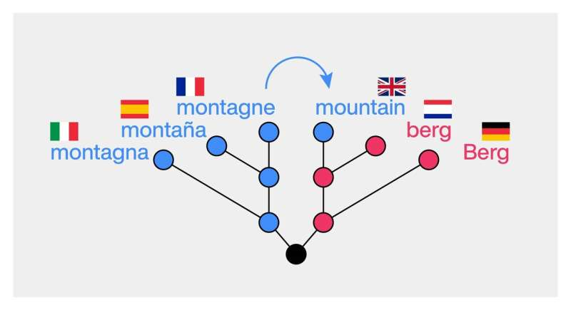 New study tests machine learning on detection of borrowed words in world languages