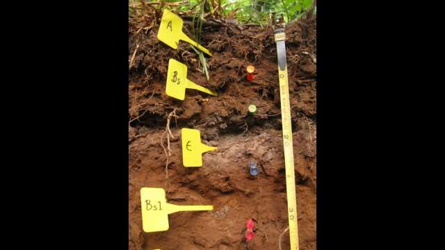 New way of analyzing soil organic matter will help predict climate change