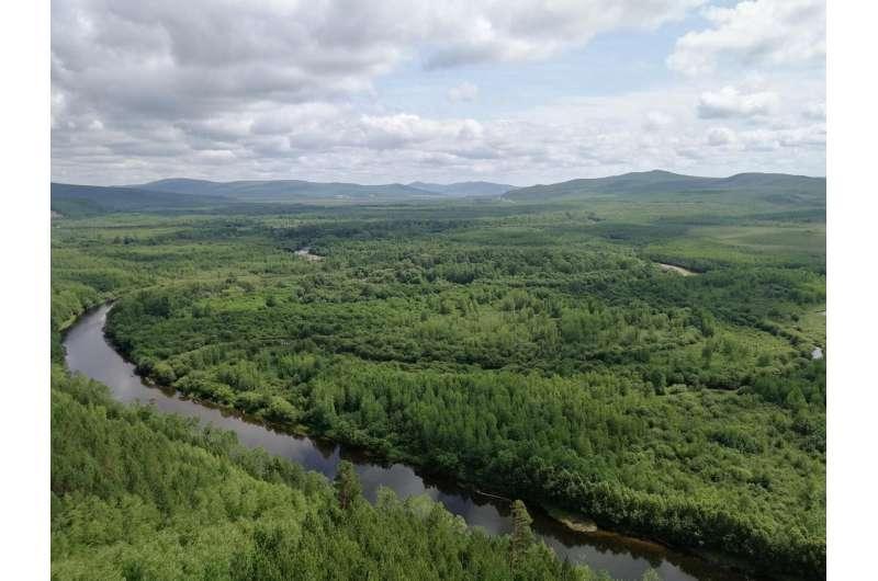 Nitrogen in permafrost soils may exert great feedbacks on climate change