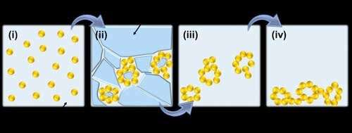 Noble Metal Aerogels Enabled by Freezing: Multi-Scale Structured Materials for Electrocatalysis and Photoelectrocatalysis