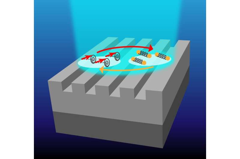Observing magnon-polarons using a nanopatterned magnetic structure lit by short laser pulses