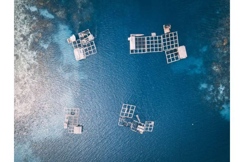 Ocean fish farming in tropics and sub-tropics most impacted by climate change: UBC study