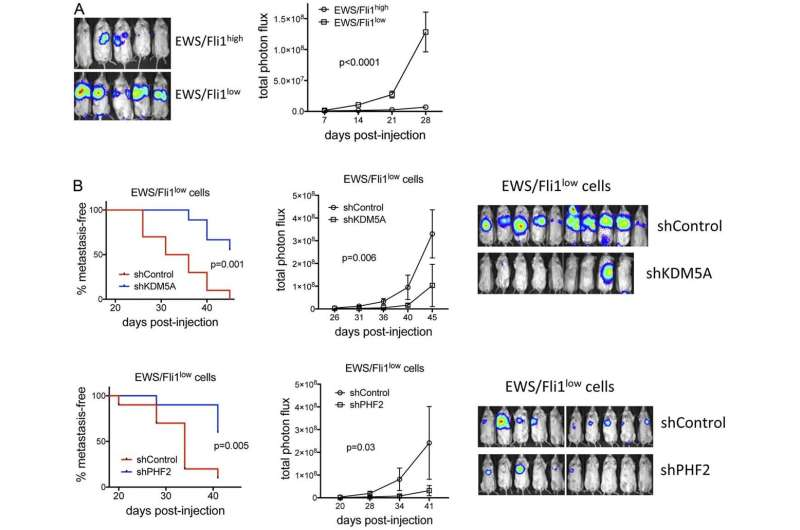 Oncotarget: KDM5A and PHF2 positively control expression of pro-metastatic genes