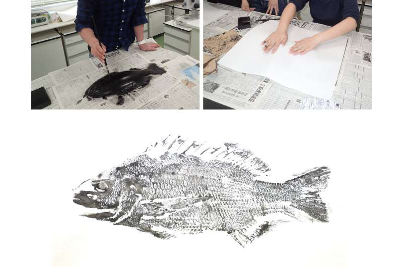 On the edge between science and art: Historical biodiversity data from Japanese 'gyotaku'