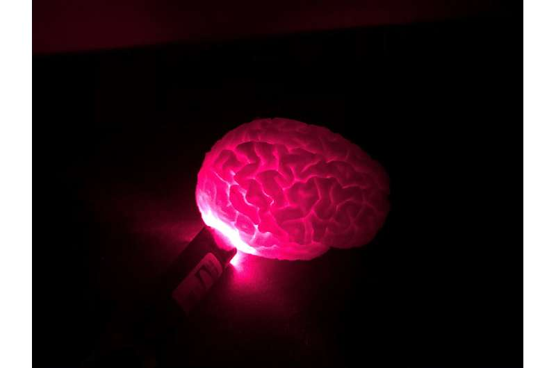 Optical imaging technology may help surgeons better treat cancer, brain diseases