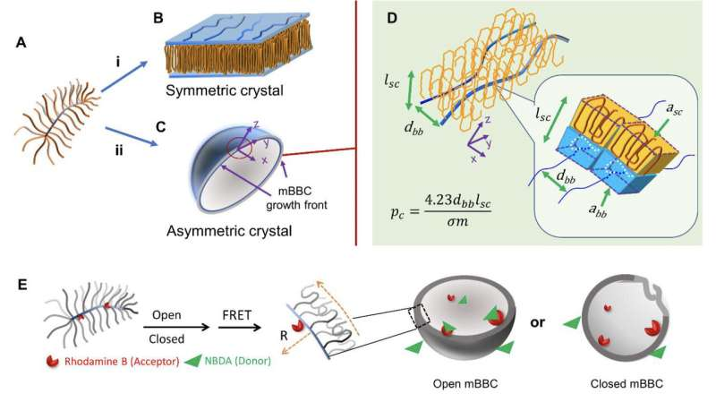 Pausing nature's crystal symmetry to advance targeted medicine delivery