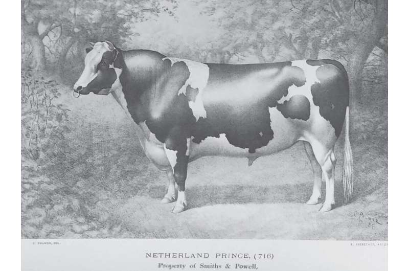 Penn State and NAGP identify and reconstitute two lost Holstein lines