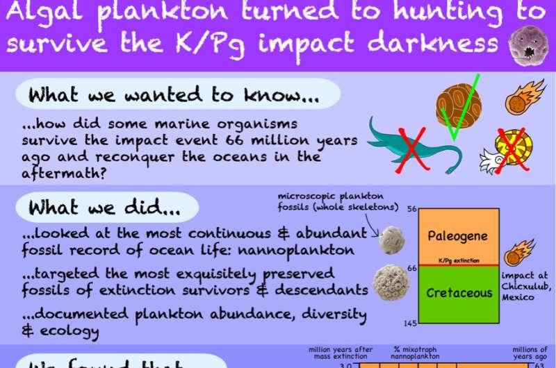 Plankton turn hunters to survive dinosaur-killing asteroid impact