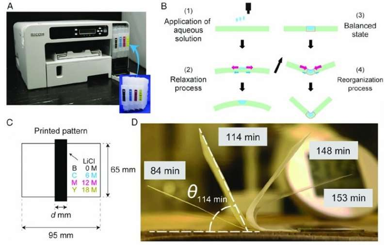 Plant inspired: Printing self-folding paper structures for future mechatronics