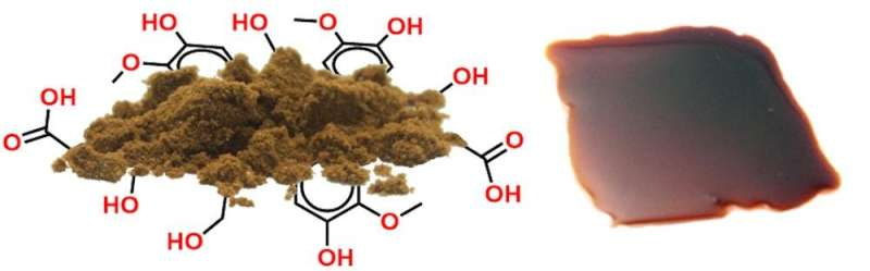 Plastic from wood? X-ray analysis points the way to lignin-based components made to measure