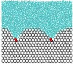Polymers to the rescue! Saving cells from damaging ice