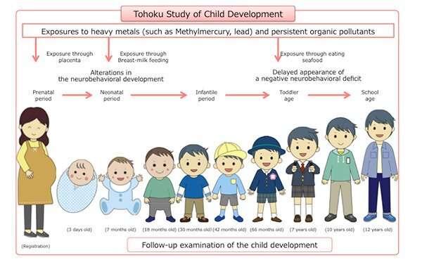 Pre/Postnatal Lead Exposure Affects Neurodevelopment in Japanese Children