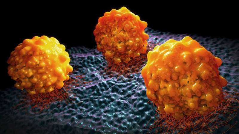 Preventing metastasis by stopping cancer cells from making fat