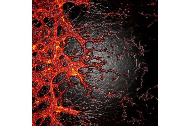 Promising discovery for patients with diabetic retinopathy