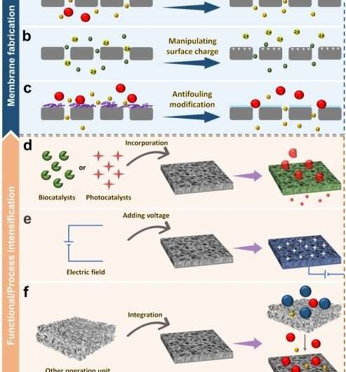 Promising strategies to enhance separation selectivity of nanofiltration