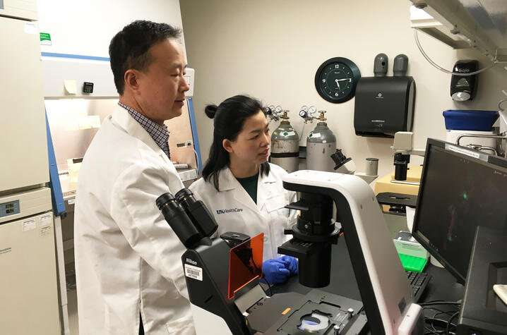 Protein could offer therapeutic target for breast cancer metastasis