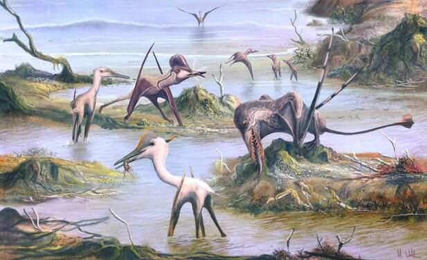 Pterosaurs undergo dental examination to reveal clues about diets and lifestyles