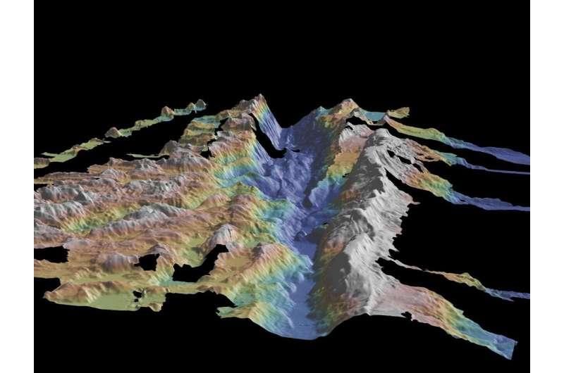 Rare 'boomerang' earthquake observed along Atlantic Ocean fault line