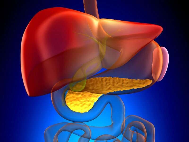 Recent diabetes + weight loss tied to pancreatic cancer risk