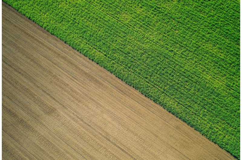 Rural resilience rests on a green recovery