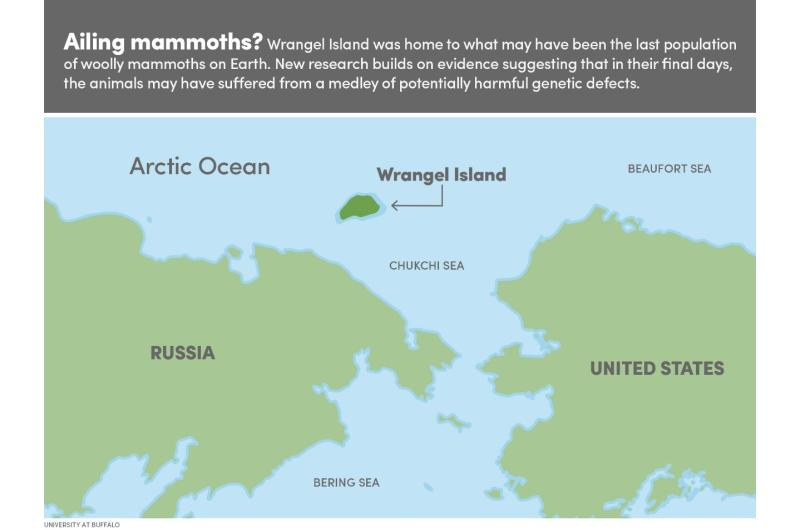 Scientists resurrect mammoth's broken genes