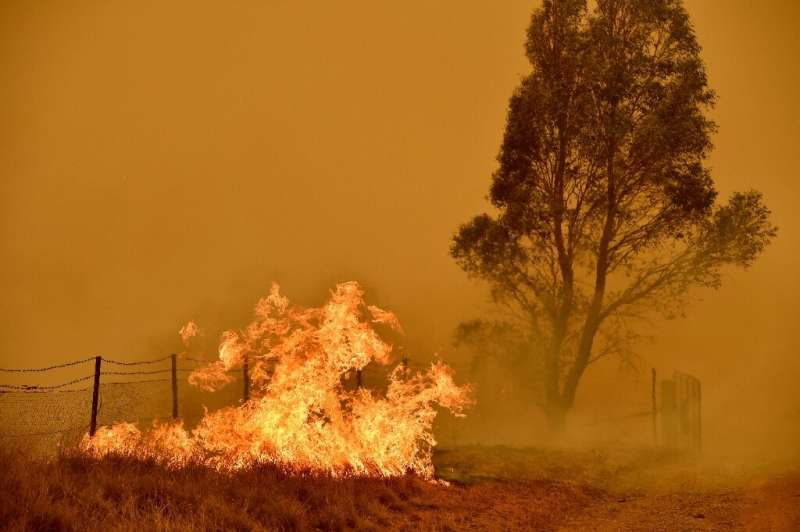 Scientists say rising temperatures will see bushfires occur more frequently