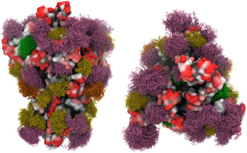 Searching the COVID-19 spike protein for a potential vaccine
